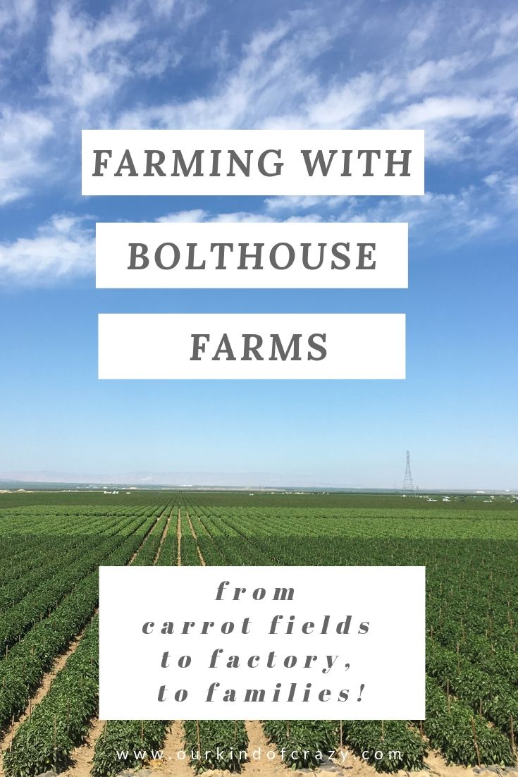 Bolthouse Farms - Farming from carrot fields to factory, to families!