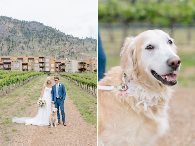 bride groom portrait kelowna osoyoos just married dog bouquet.jpg