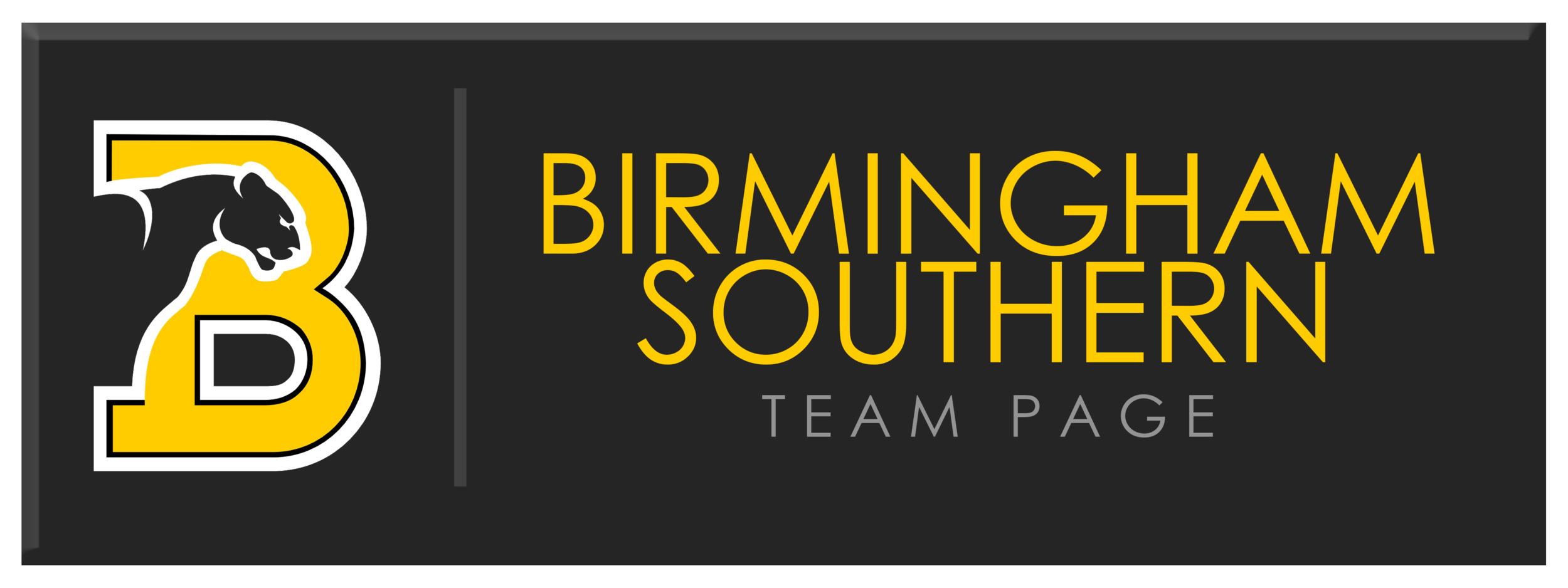 BSC TEAM PAGE.png