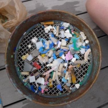 Pangaea Explorations: plastic pollution