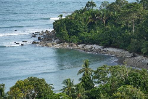Golfo dulce, The Osa Peninsula, Costa Rica