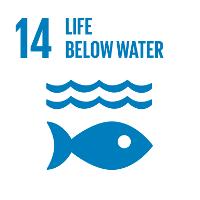 sustainable development goals #14 Life Below Water #SDGs