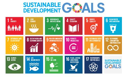The Un sustainable develop,ment goals