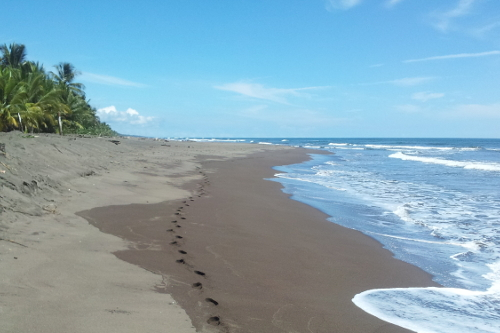 EarthChangers-Costa-Rica-Ecotourism-500x333.jpg