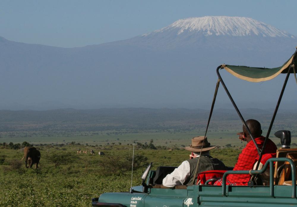 Campi-ya-Kanzi-Kenya-game-drive-Kili-elephant-1000x700.jpg