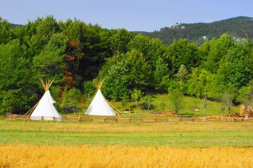 Linden Tree Retreat & Ranch Tipiji