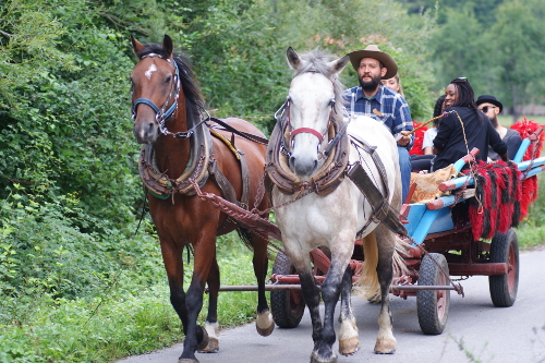 Visiti the community on the wagon ride