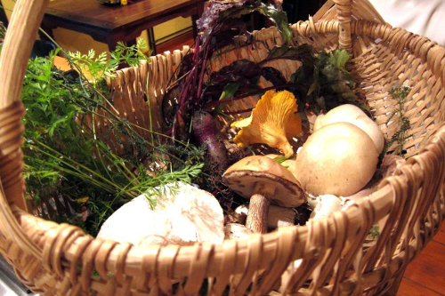 Local food foraging