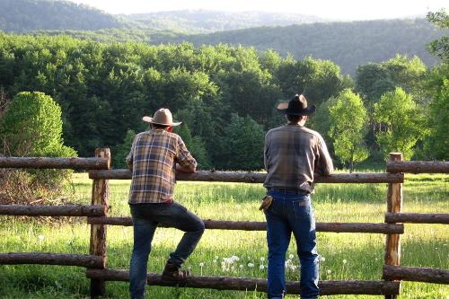 Horse riding area cowboys