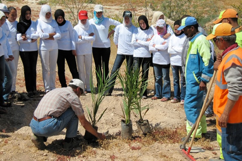 Education for All - tree planting Morocco