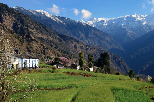 India Village Ways - Guesthouse, Supi Village