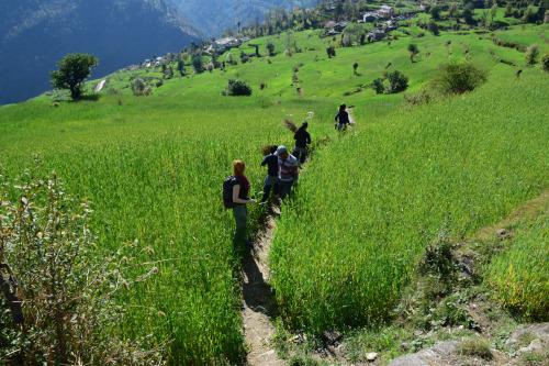India Village Ways, Supi