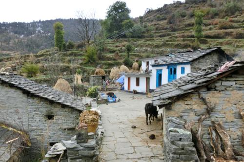 India Village Ways - Khali Jhuni Village-