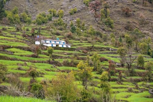 India Village Ways - Jhuni