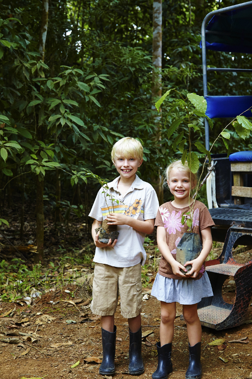Lapa-Rios-Costa-Rica-Plant-a-tree-500x750.jpg