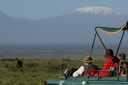 Elephants on game drive by Kilimanjaro