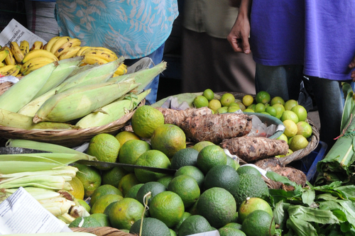 Shopping for fresh, organic, local produce at the market for the lodge, Nicaragua