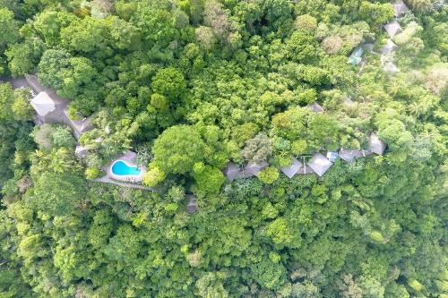 Lodge in rainforest