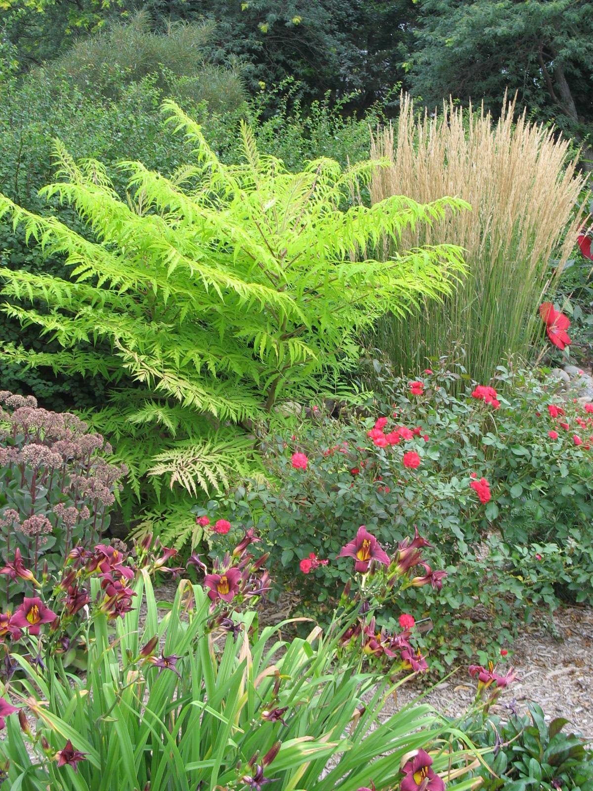 Plant installation -