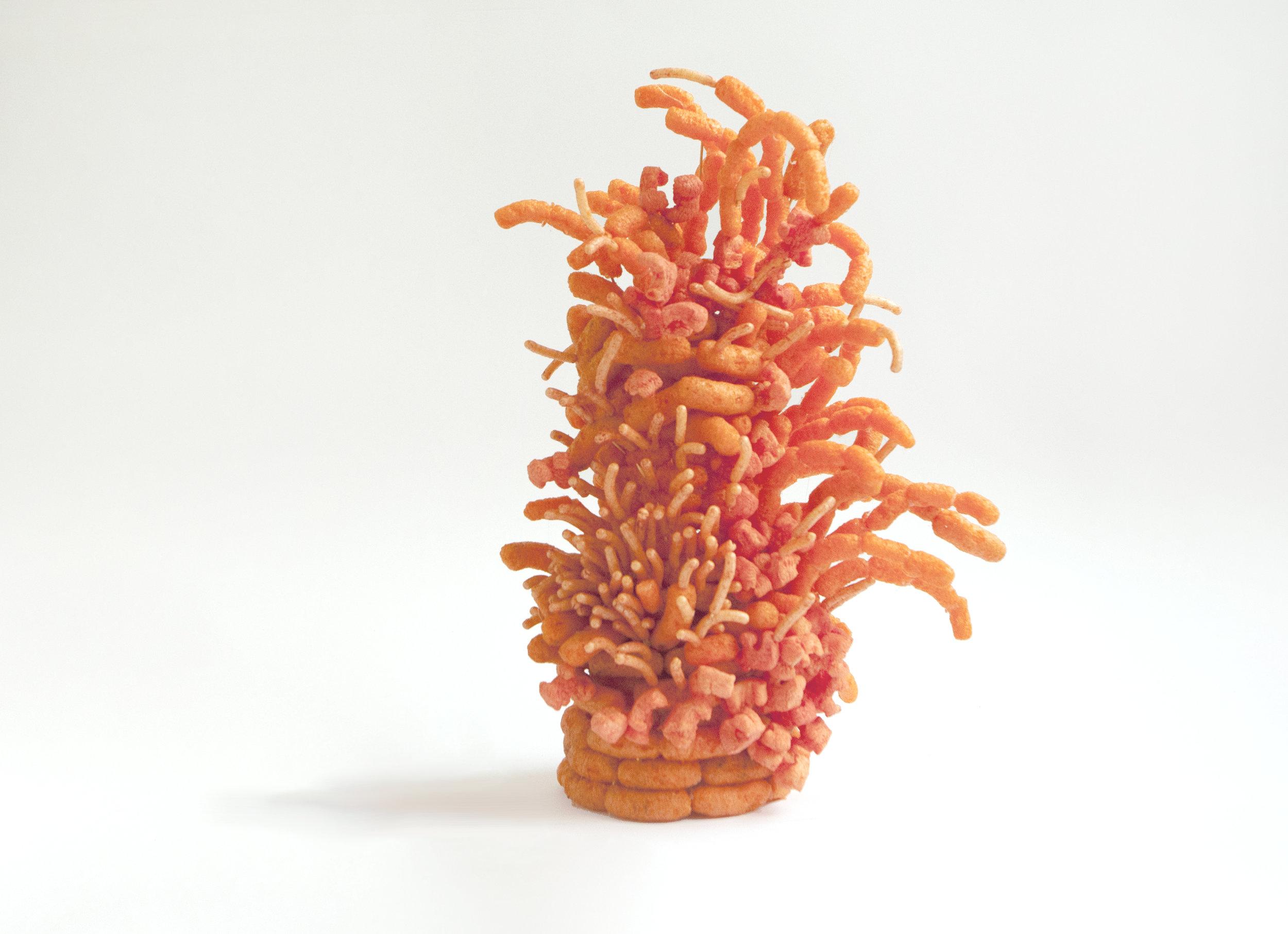 Mano Penalva, Projeto Monumento 2, Cheetos, 2017, Foto, 30 x 40 cm,Mexico