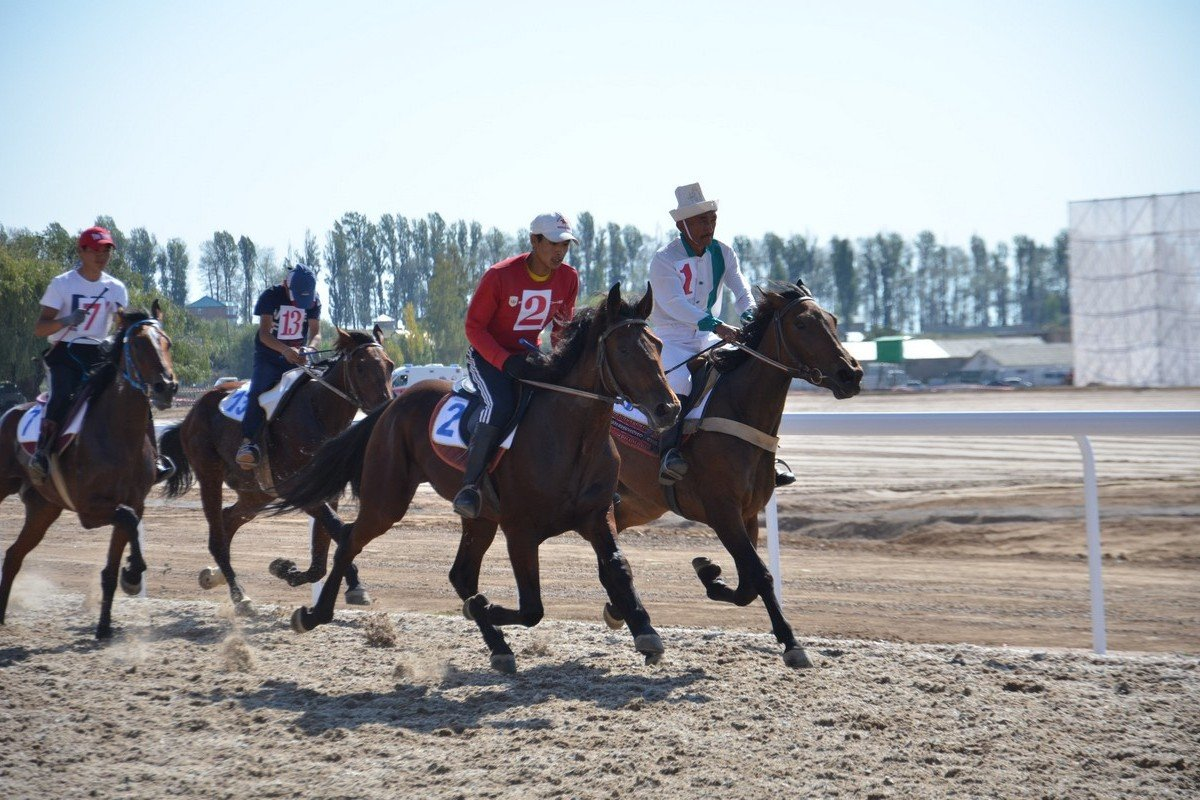 - Byshty GeorgesPacing race of three-year-old horses to a distance of 6 km. The winner is the one, who comes first.