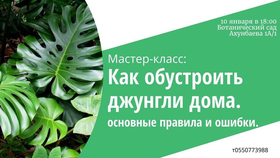 Facebook | @archa.initiative