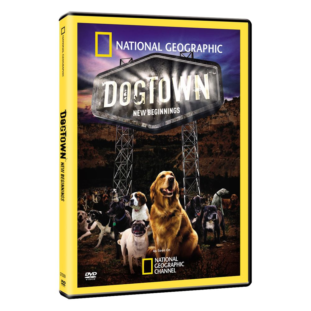BUY DVDS     DOGTOWN: NEW BEGINNINGS