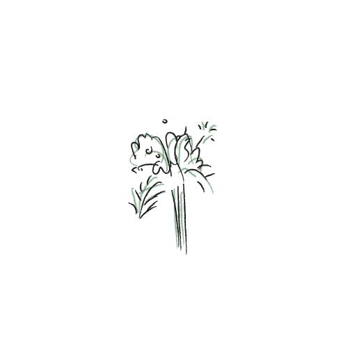 Maid's Bouquet