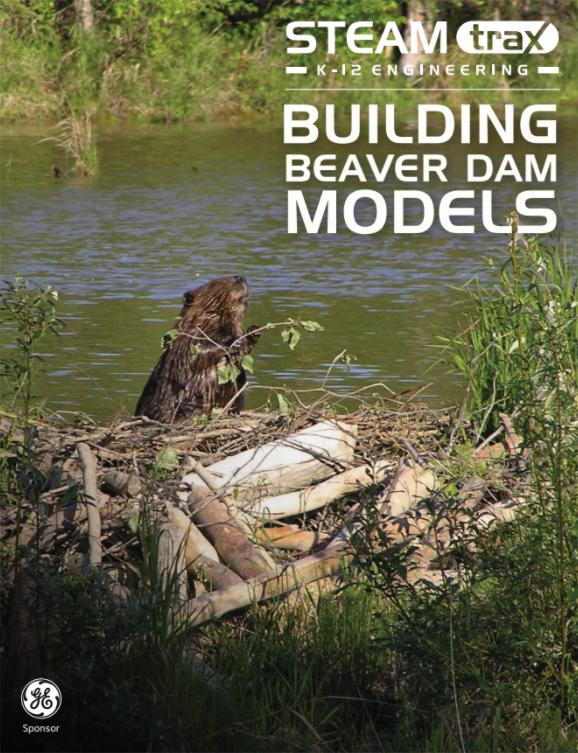 Building Beaver Dam Models