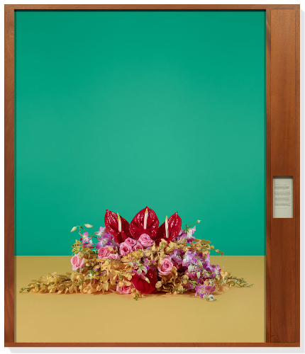 Taryn Simon's Will of Capital at Gagosian Gallery New York   www.gagosian.com/exhibitions/taryn-simon--february-18-2016