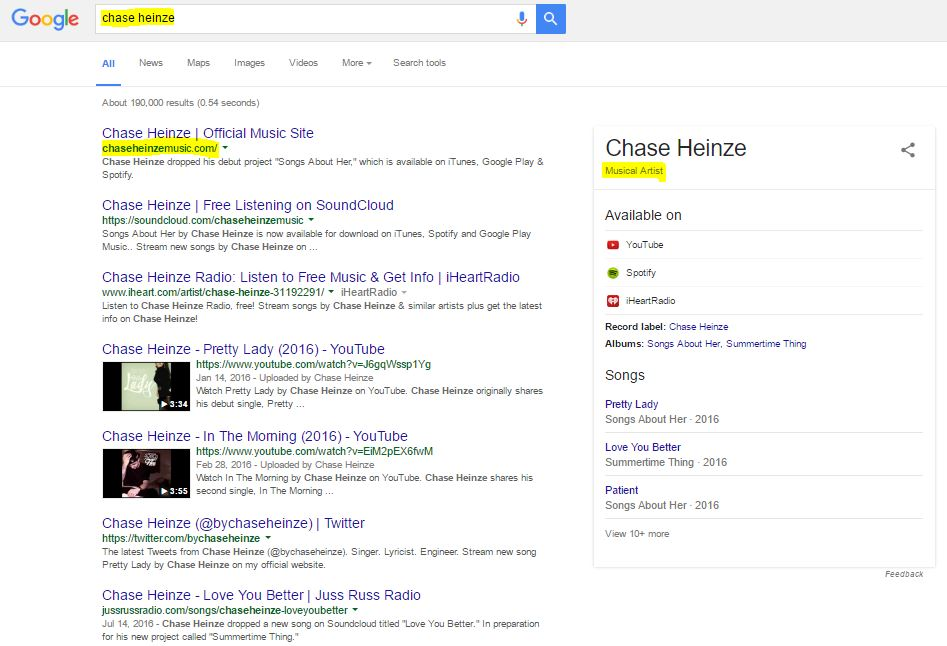 google knowledge panel for musician and bands