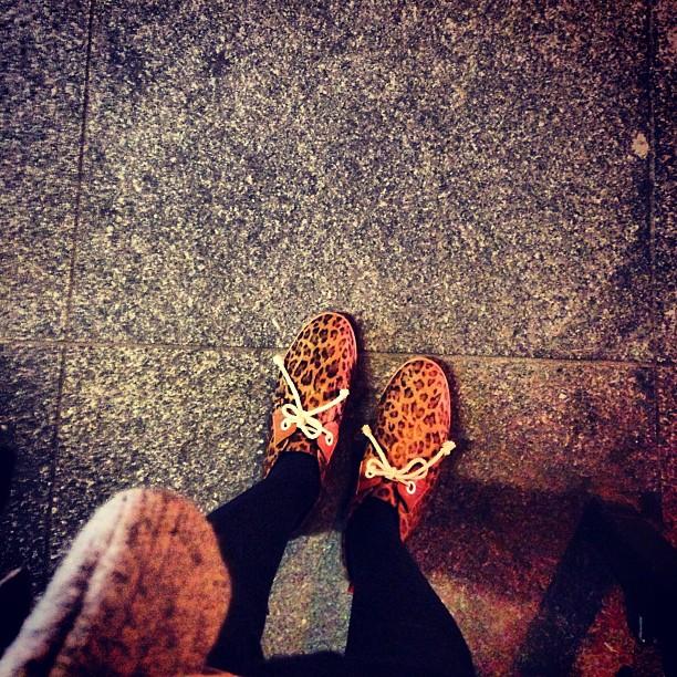 leopard feet.jpg