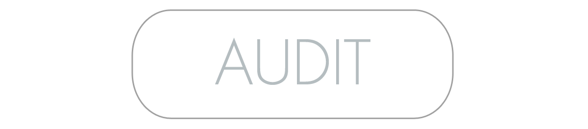 Audit-Button.png
