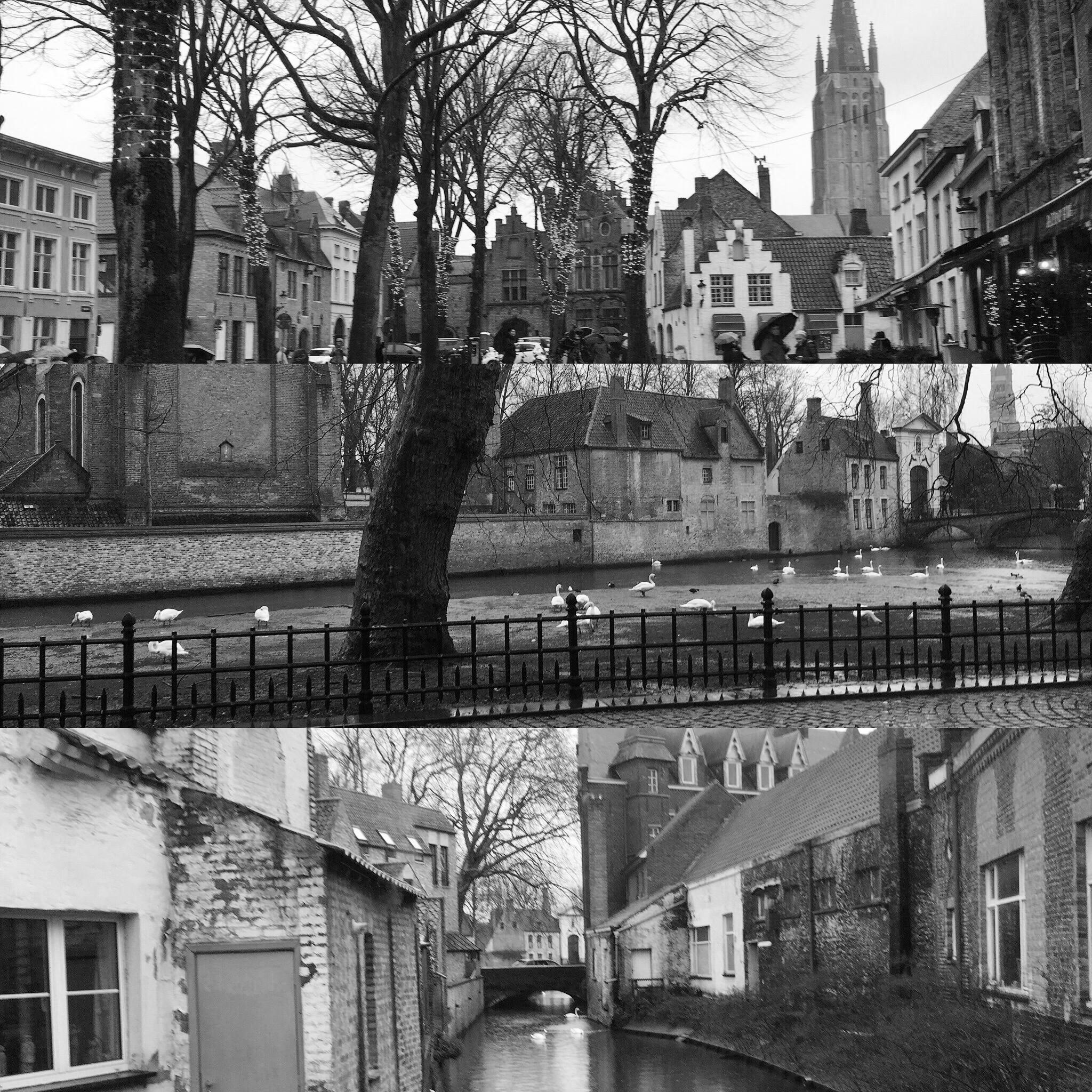 The Starlight Filmmaker Residency in Bruges, 2018