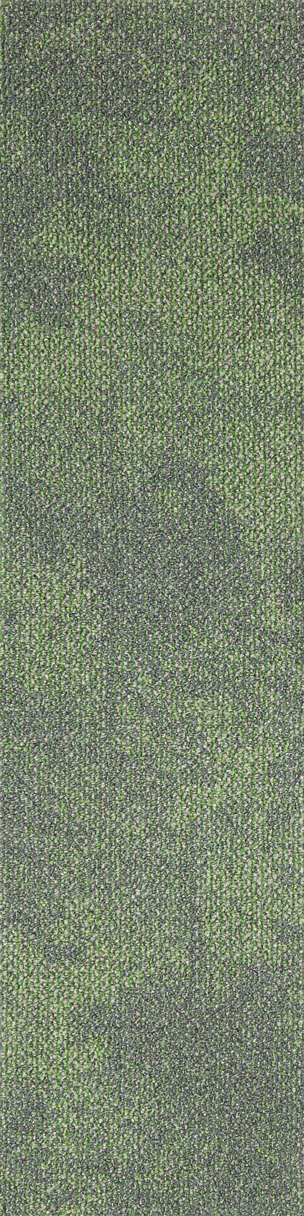OC10 Seagrass