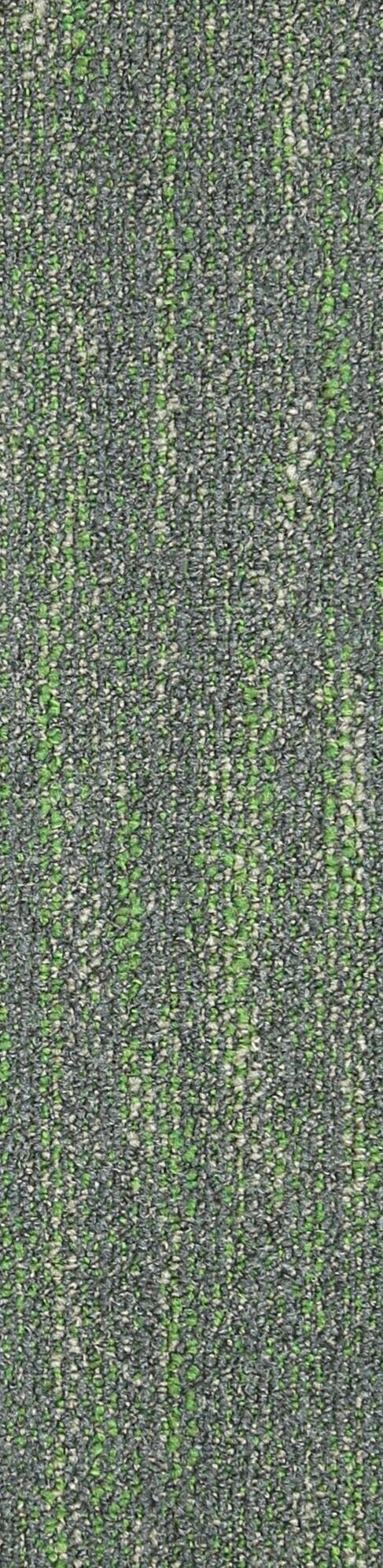 SE10 Seagrass