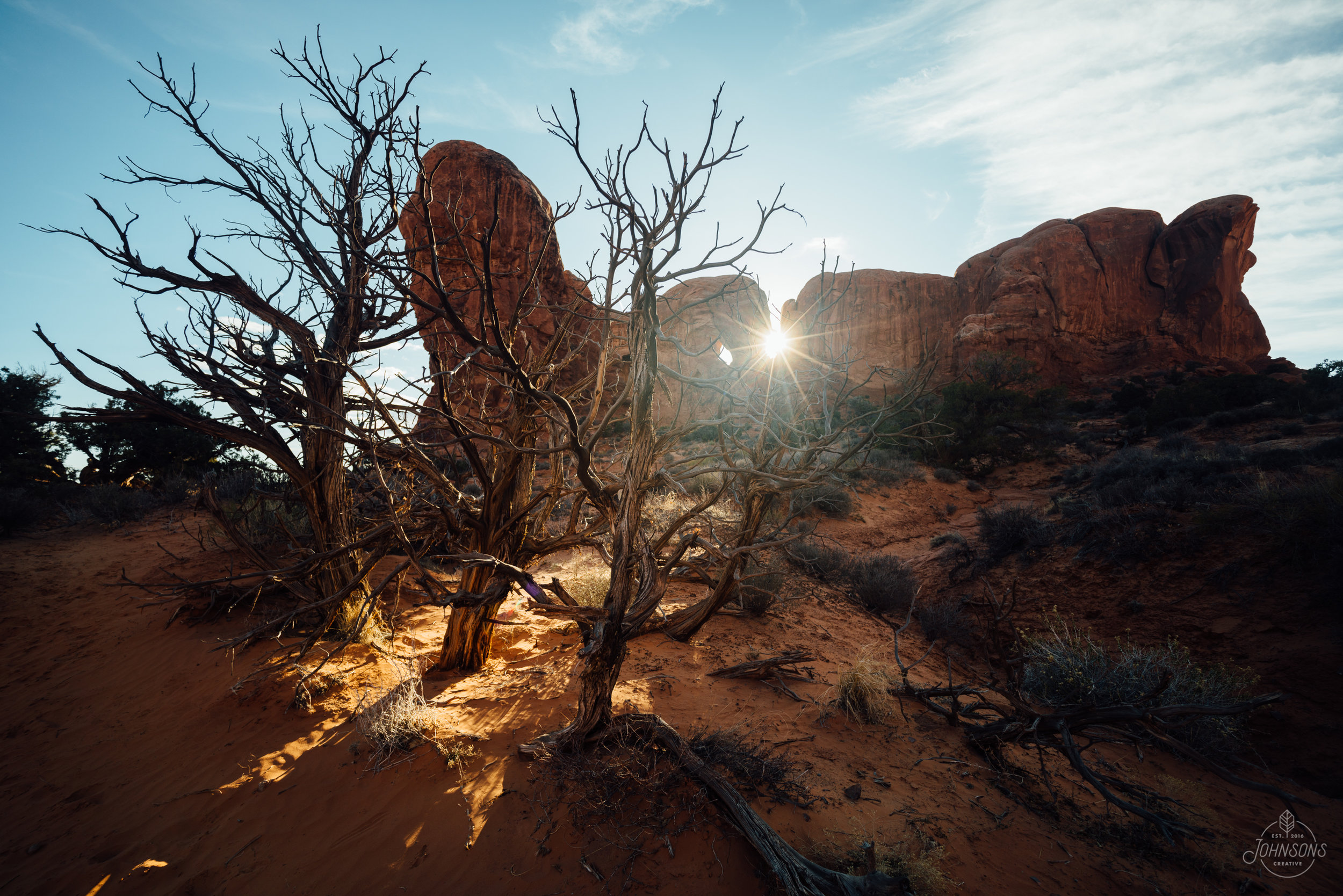 Sony a7rii |15mm 4.5 |f10 | 1/30 sec |ISO 25    This scene was on the way back from Double Arch. I am bummed I didn't set up and take a proper photo, because it's one of my favorite compositions from the trip but I took it handheld at f/4.5 so the background is a bit out of focus. Life is hard.