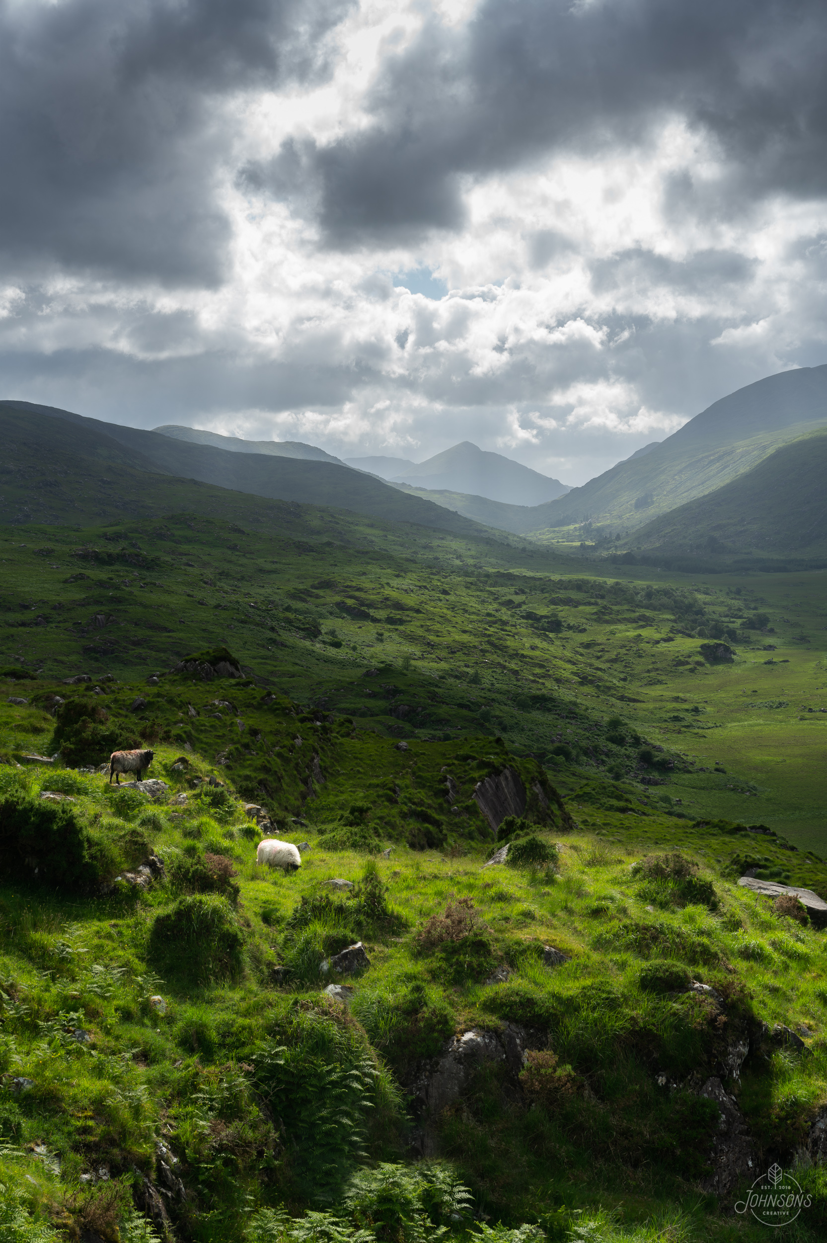 Sony a7rii | 55mm 1.8 | f11 | 1/80 sec | ISO 50 | Lee Circular Polarizing Filter    The Southern side of the park was full of crazy vistas and a few sheep on the road.    This image is available for print,  click here to order .