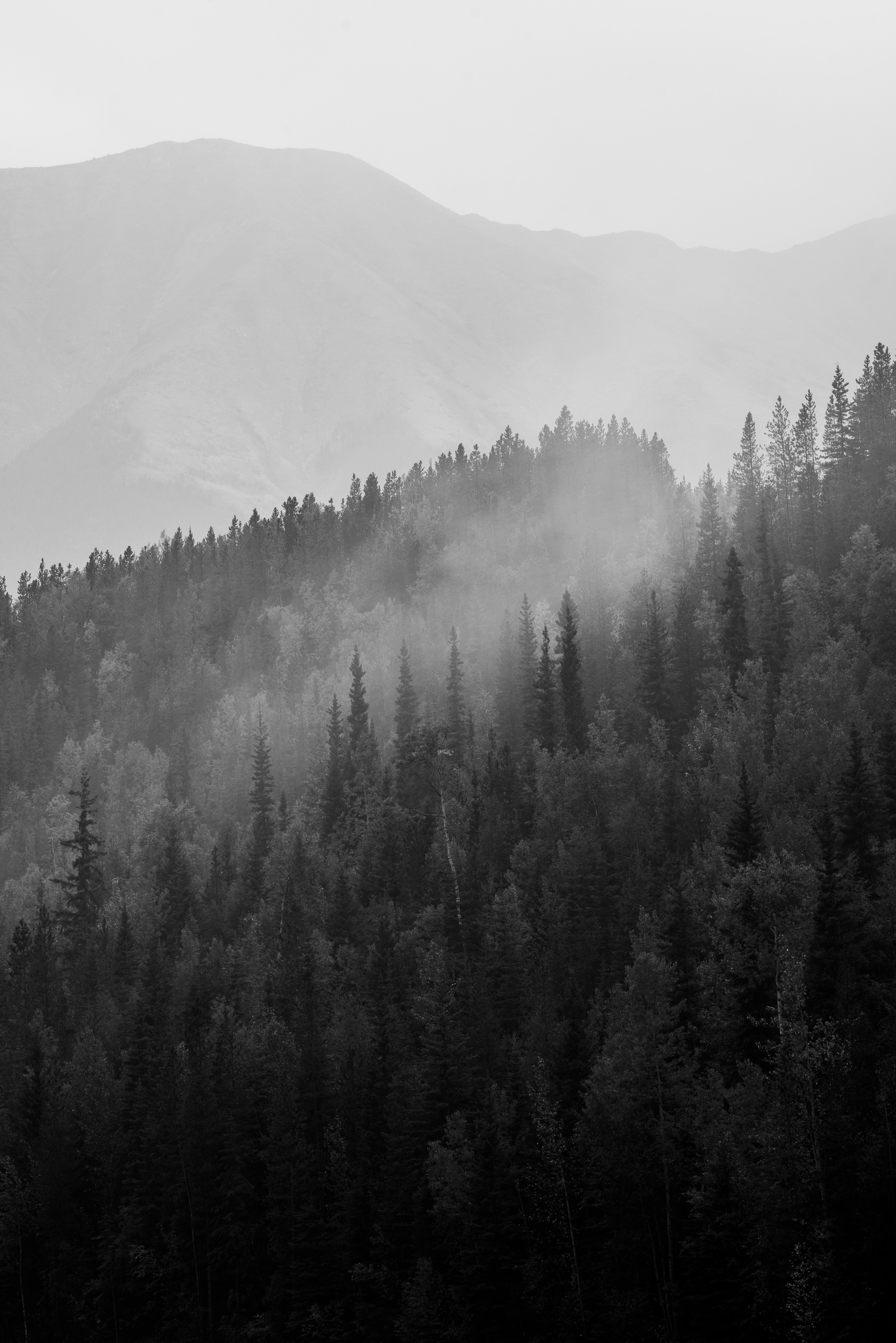Johnsons_creative_Muncho_Northern_Rockies-8045.jpg
