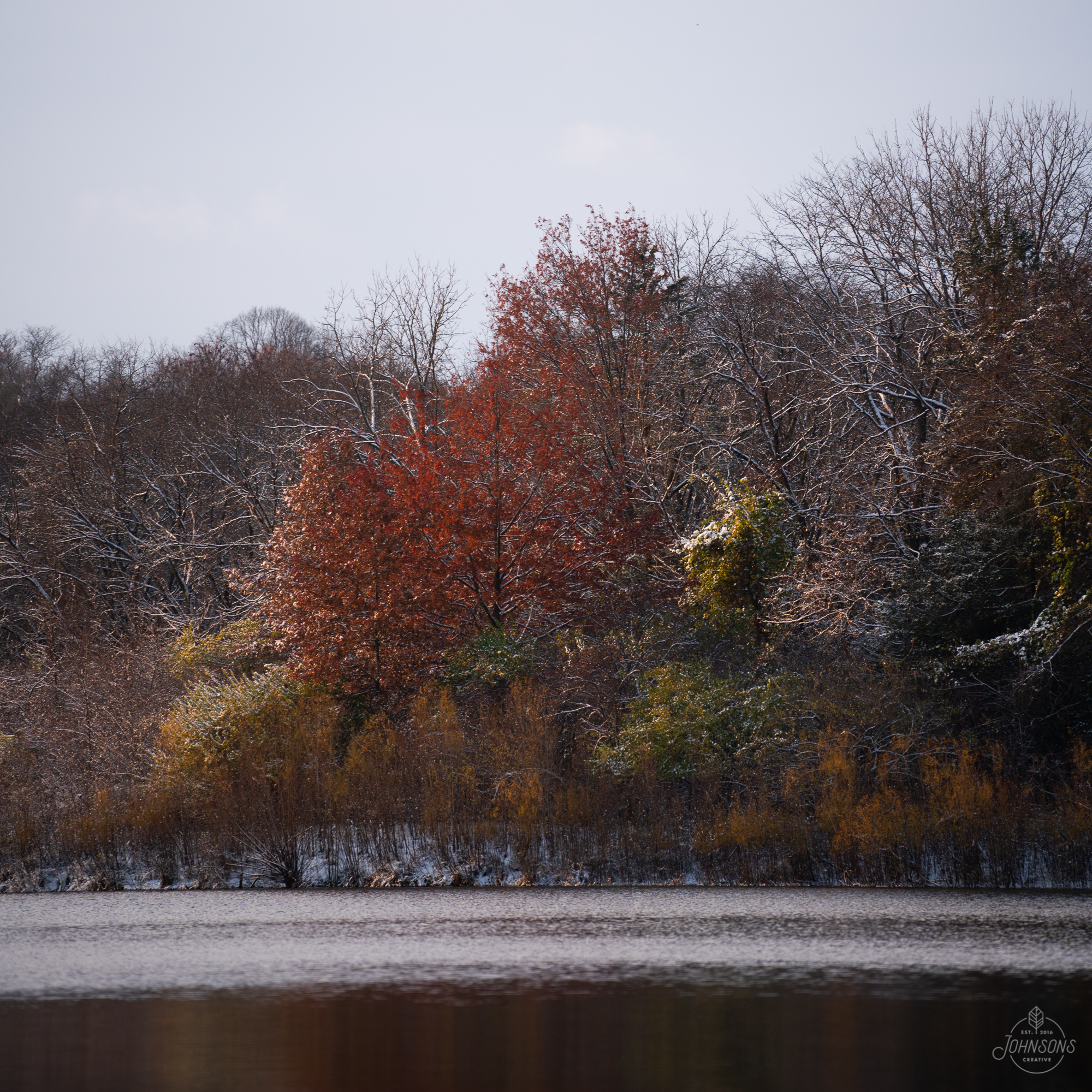 Cedar Falls, IA