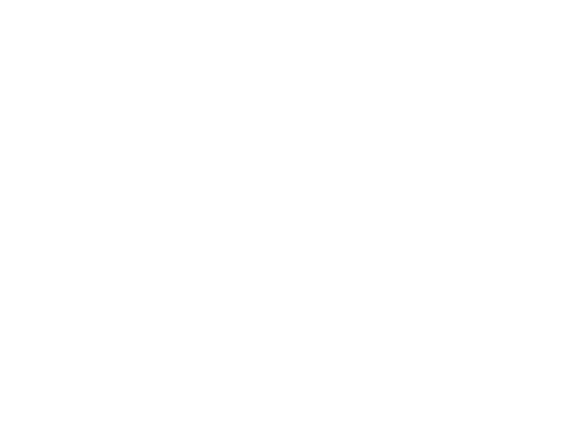 PP-3.png