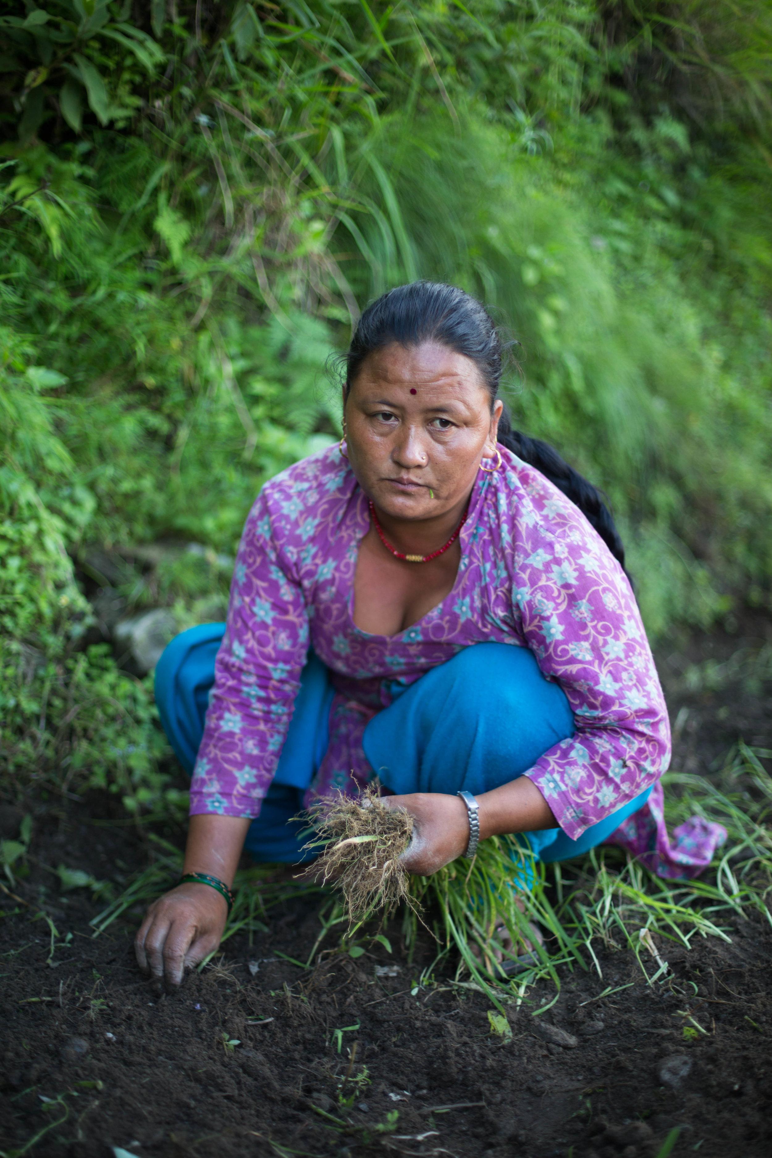Chari plants millet in her village in Gorkha, Nepal.
