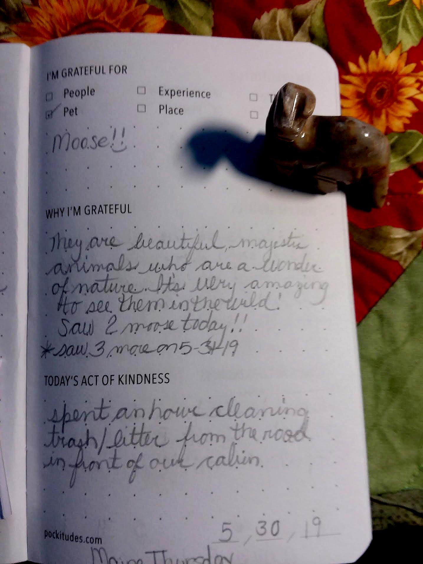 pockitudes-gratitude-journal-christine.jpg
