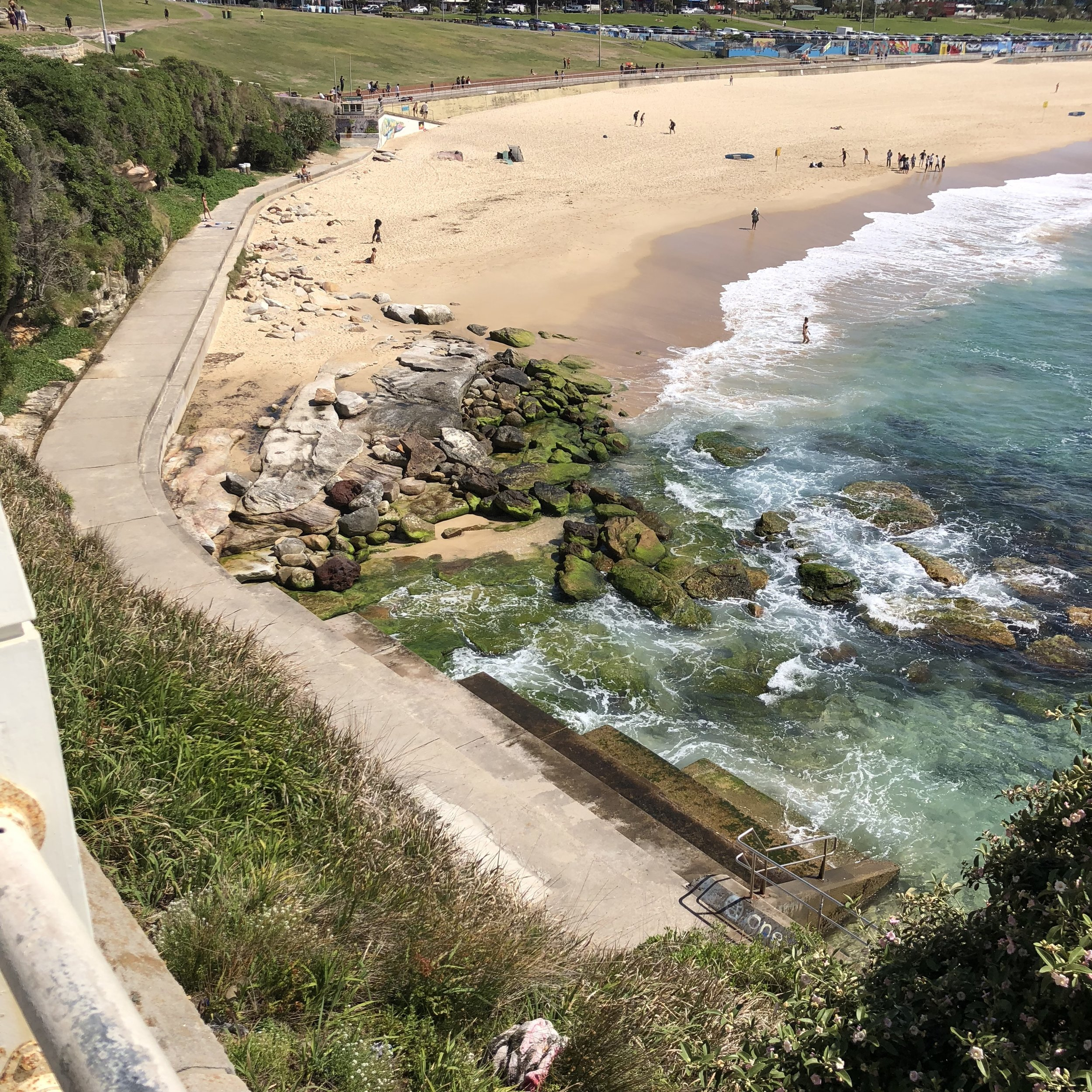 Bondi beach, I saw so many surfers!