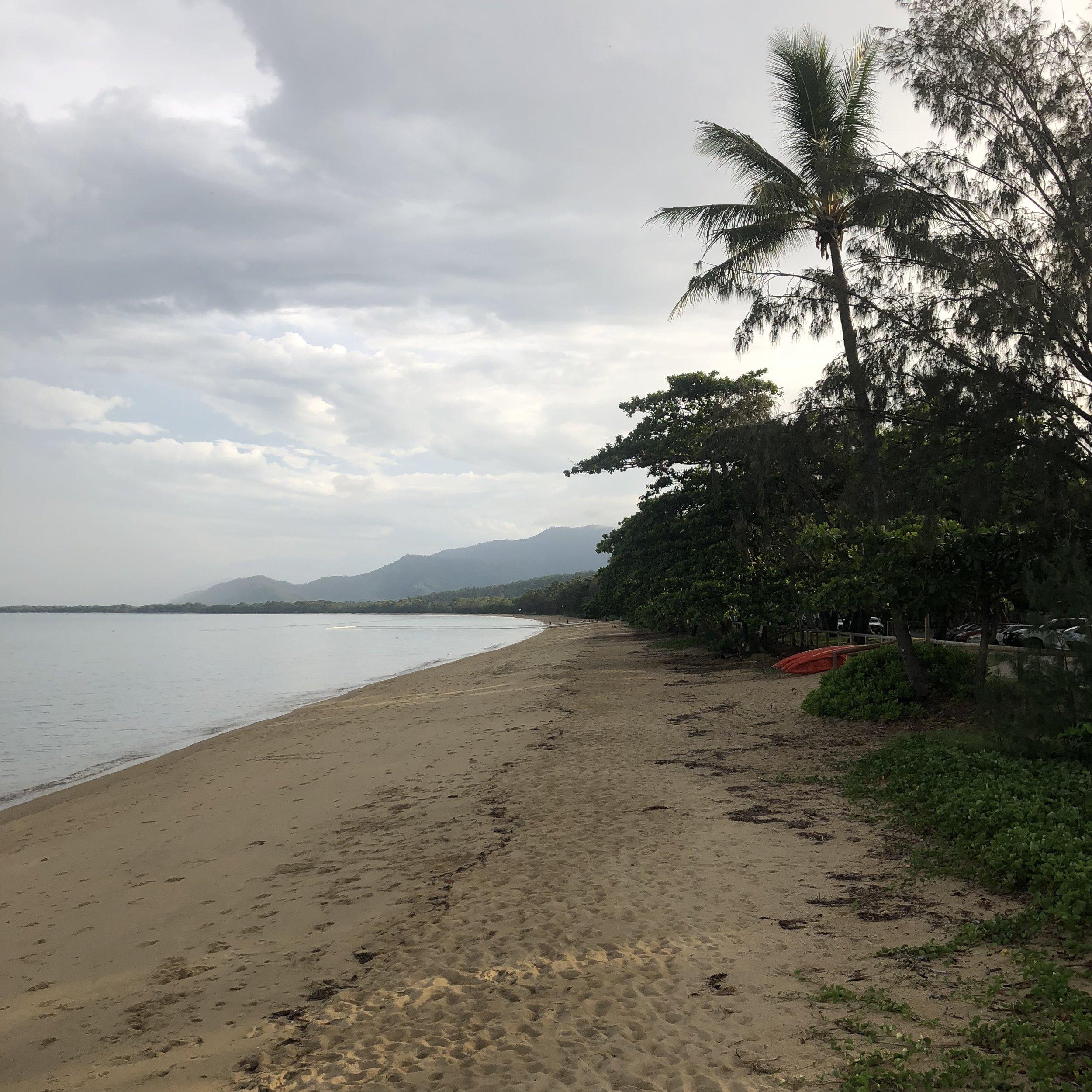 Palm trees line the shore line.
