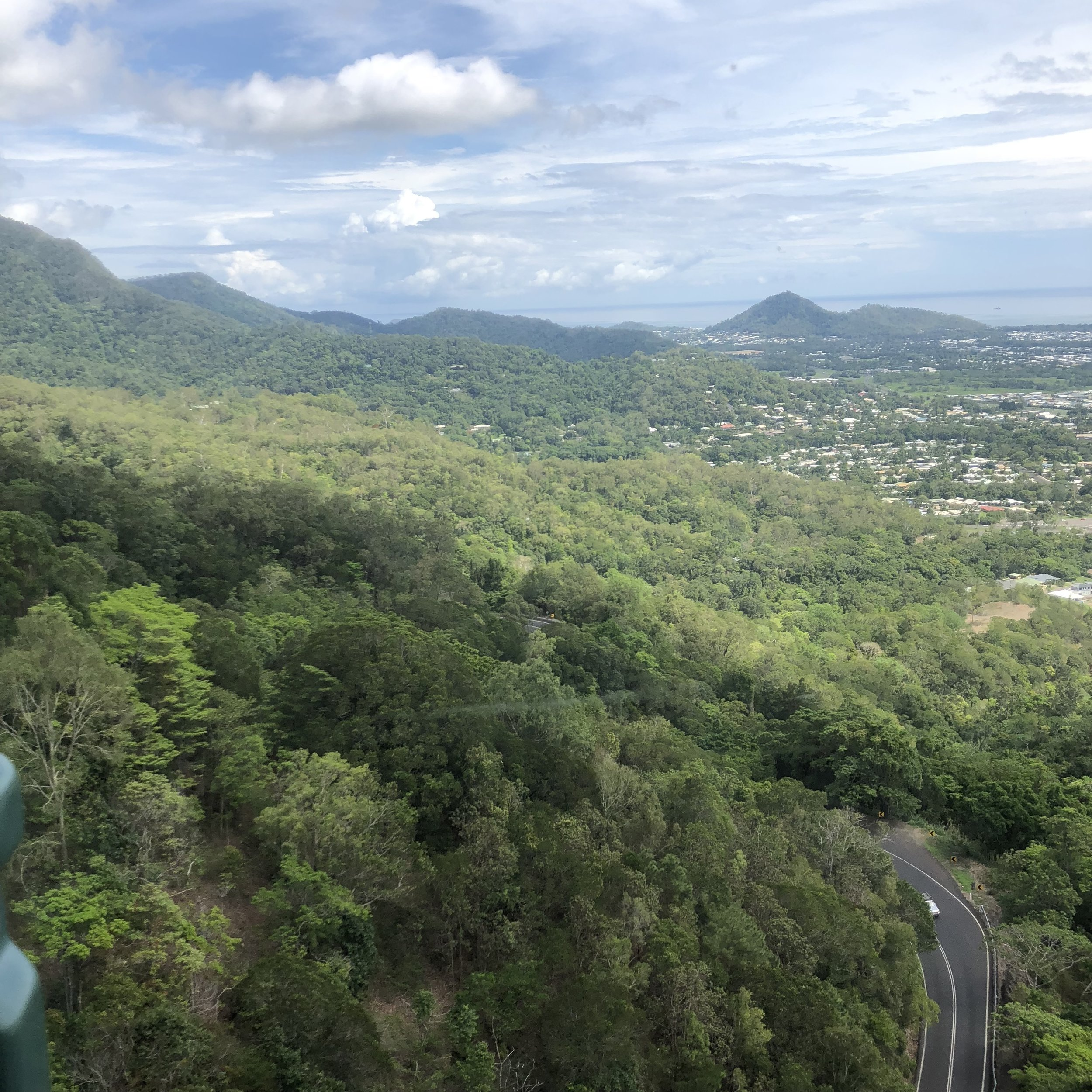 Views from above, on the skyrail!