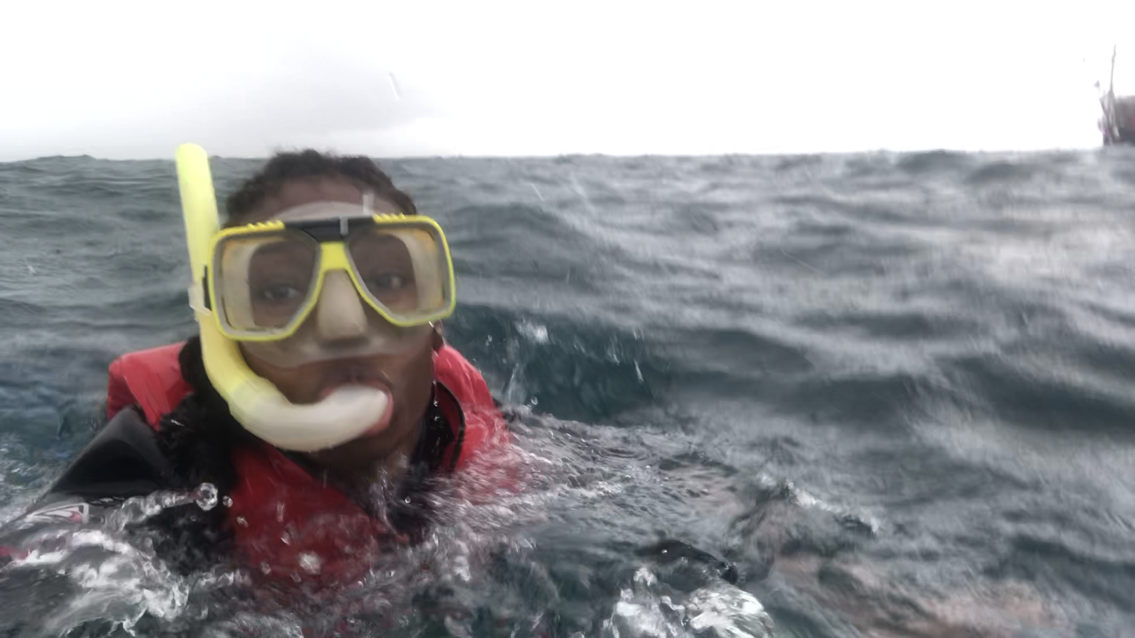Just snorkeling, swimming around the Great Barrier Reef!