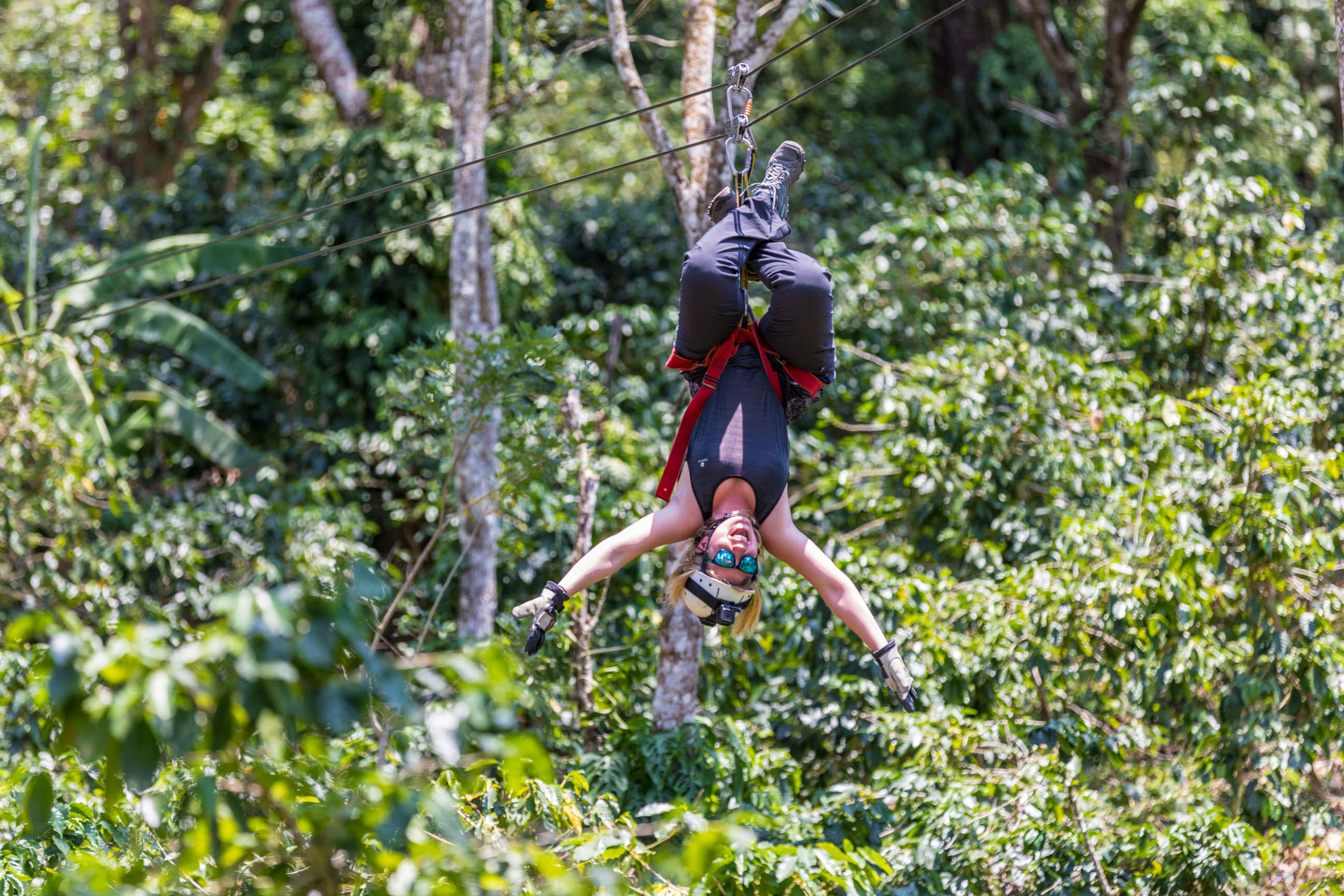 Day 2: Mombacho zipline canopy tour
