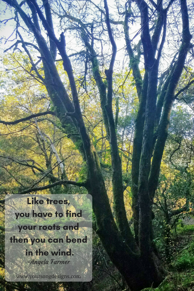 Like trees you have to find your roots and then you can bend in the wind. Angela Farmer quote