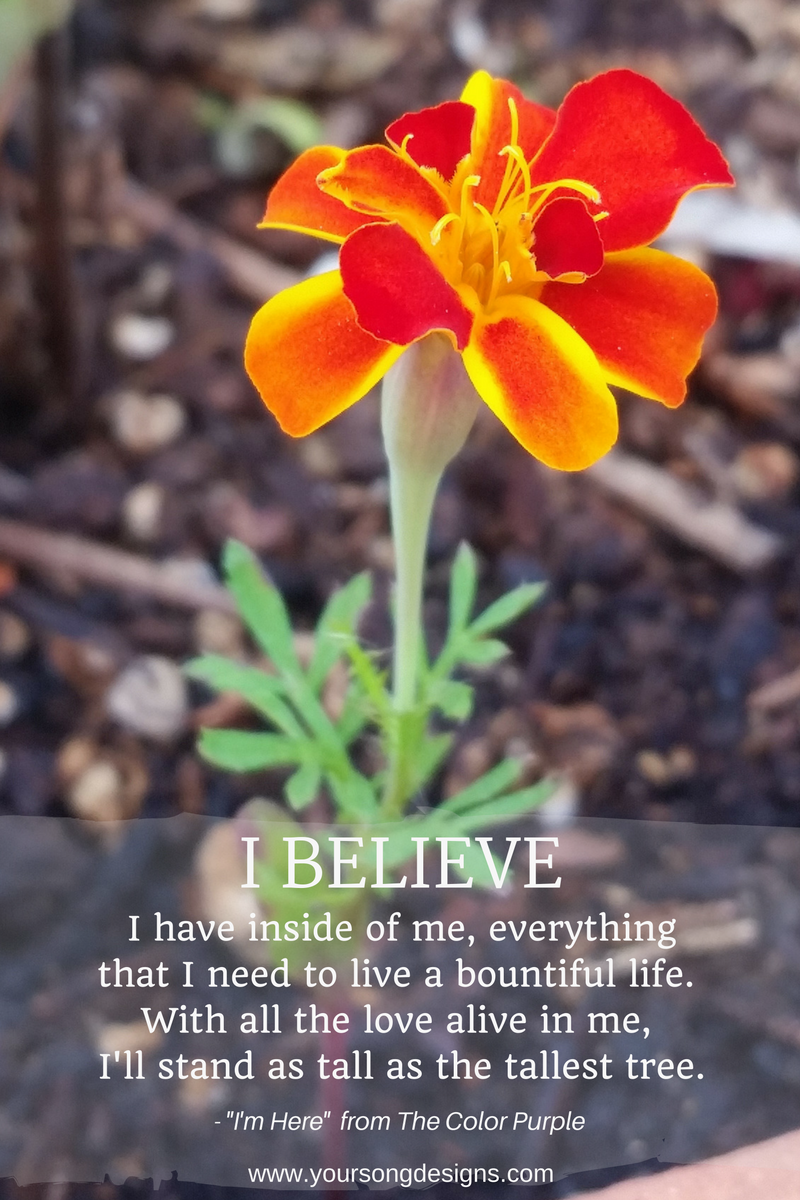 courage-marigold-gardening-teaching-music-flowers